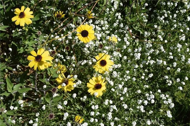 0 Vista Del Sol off Greeley, Lake Mathews CA: http://media.crmls.org/medias/2fc09697-8e45-4f69-b49f-17b188e883e9.jpg