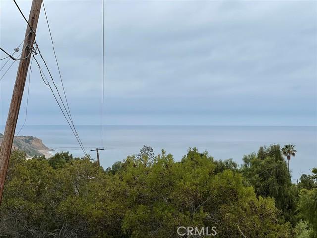 30 Peppertree Drive, Rancho Palos Verdes CA: http://media.crmls.org/medias/302981fb-baa5-4d1c-bfde-62bc6f7586ed.jpg