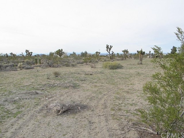 0 Sierra Road  Pinon Hills CA 92372