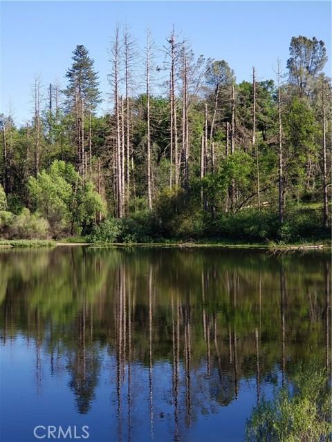 33005 Road 221, North Fork CA: http://media.crmls.org/medias/3080adbc-fed5-44c2-886a-12f6f321ff70.jpg