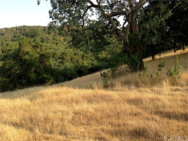 40 Arroyo Sequoia Carmel Valley, CA 93923 - MLS #: SB17214595