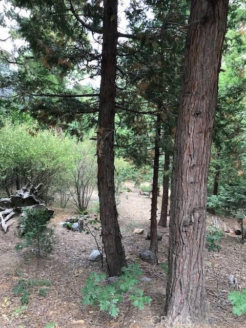 237 Chippewa, Lake Arrowhead CA: http://media.crmls.org/medias/31d7cc95-097c-4c0f-9d79-1240e718afdb.jpg
