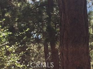 0 Old Toll Road, Lake Arrowhead CA: http://media.crmls.org/medias/32410dac-abef-4739-90a1-227c20c16adc.jpg