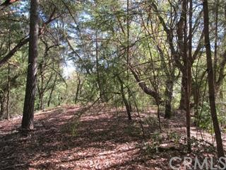 0 Big Basin Way, Outside Area (Inside Ca) CA: http://media.crmls.org/medias/3295c0c7-f034-444e-a591-92927c518d0b.jpg