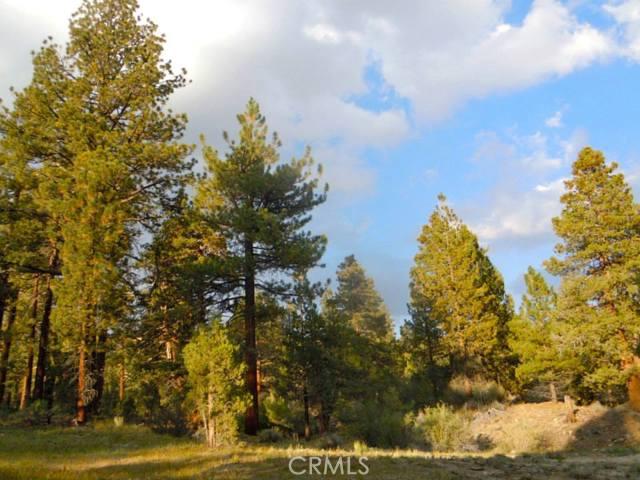 Terreno por un Venta en RAINBOW Angelus Oaks, California Estados Unidos