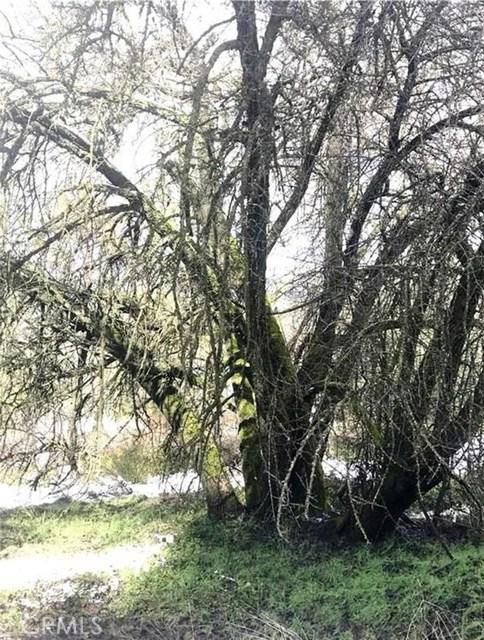 1840 Nutter Ranch Road Mariposa, CA 95338 - MLS #: MP17259003