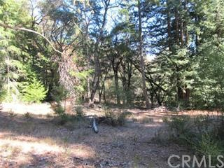 0 Big Basin Way, Outside Area (Inside Ca) CA: http://media.crmls.org/medias/3342bb1e-6993-4ef6-b12a-aac507e734e4.jpg