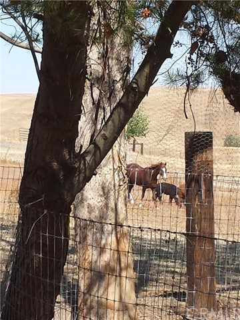 6065 Lazy Hill Road, San Miguel CA: http://media.crmls.org/medias/340b8275-6753-402e-a0bf-66a023dc42d5.jpg