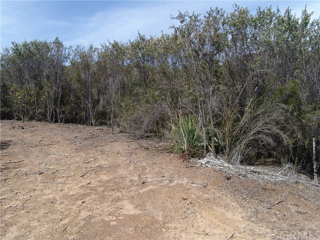 18 Hacienda, Murrieta CA: http://media.crmls.org/medias/352039a6-3e6d-4a94-a78b-fe1b877b4ffd.jpg