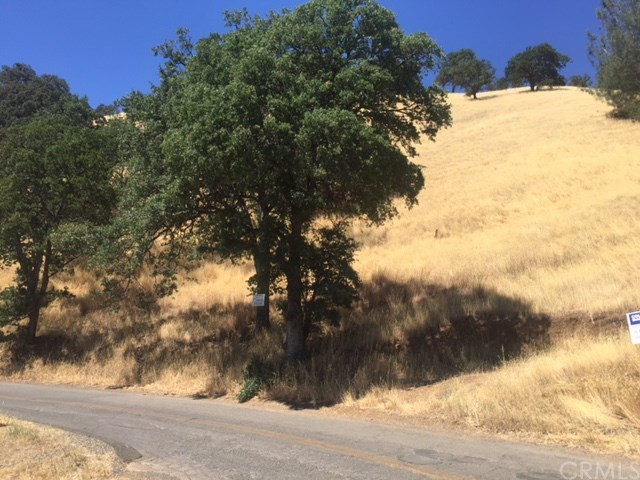 Land for Sale at 12800 San Joaquin Avenue Clearlake Park, California 95422 United States