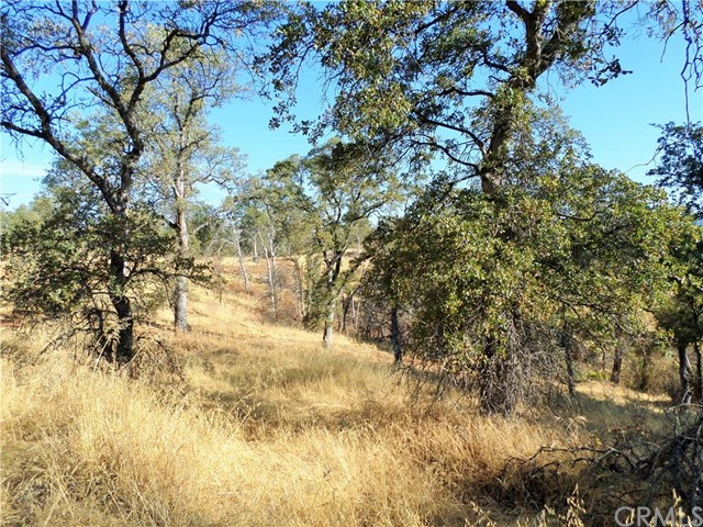 Additional photo for property listing at 1 Ford Lot 26 Oroville, California United States