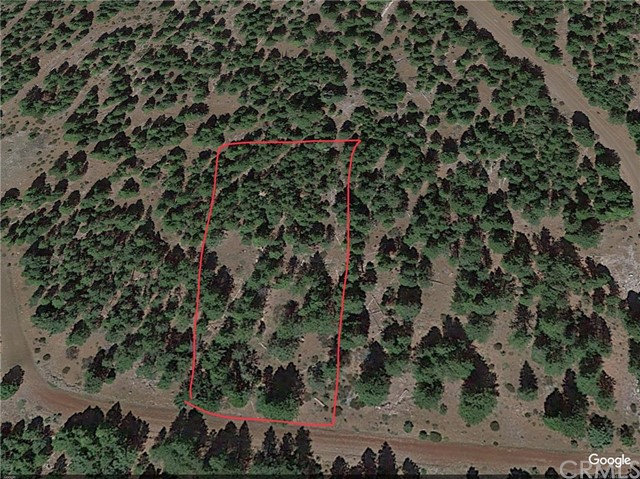 Land for Sale at Tuttletown Drive Alturas, California United States