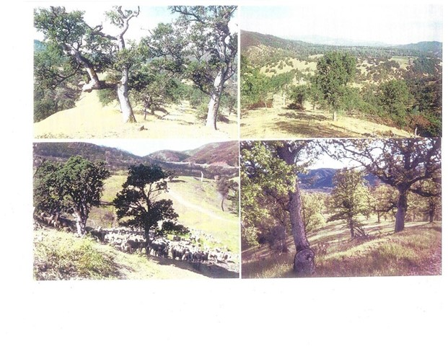 Terreno por un Venta en 540 Old Long Valley Road Clearlake Oaks, California 95423 Estados Unidos