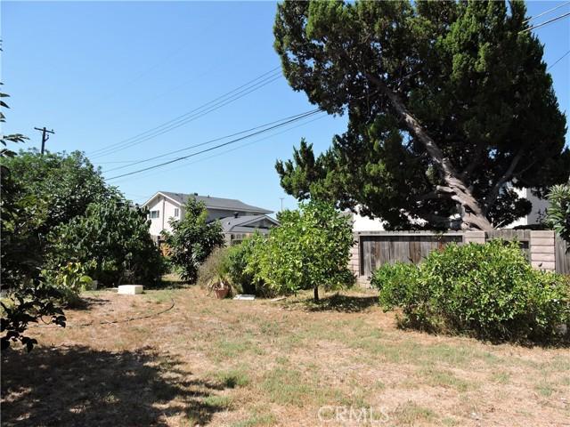 217 Pierre Road, Walnut CA: http://media.crmls.org/medias/361a6451-2b19-40f7-bced-ec6f1ed2feb6.jpg