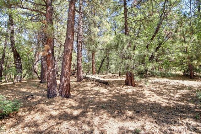 1369 La Crescenta Drive, Big Bear CA: http://media.crmls.org/medias/366156db-6b45-4fdf-af61-7edd65e9d695.jpg