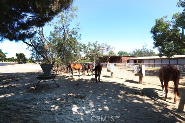 11626 Monte Vista Avenue, Chino CA: http://media.crmls.org/medias/379680ca-9415-4ba1-9daa-bbab8690fc03.jpg