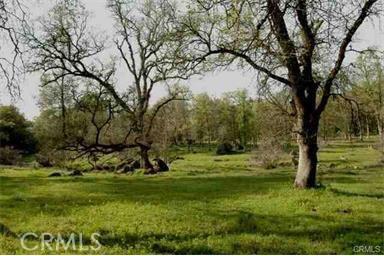 Land for Sale at 1200 Bangor Park Road Bangor, California 95966 United States