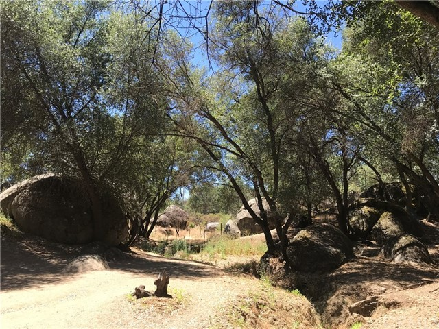 2764 Buck Pass Road, Mariposa CA: http://media.crmls.org/medias/39e27604-3591-4870-b218-969e7f8c0ac1.jpg