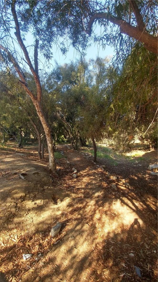 27815 Goetz Road, Menifee CA: http://media.crmls.org/medias/3a130674-ca73-4bd9-8ff6-756348d1a02a.jpg