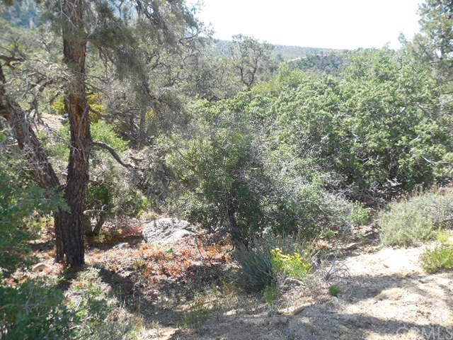 0 Old Oak Springs/Desert Front, Pinon Hills CA: http://media.crmls.org/medias/3a44859c-eaf4-47f9-8f24-1d6875109098.jpg