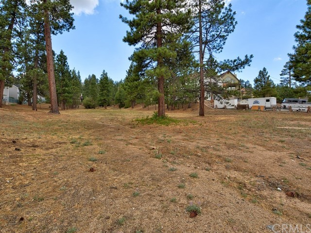 725 Cameron, Big Bear, CA, 92315