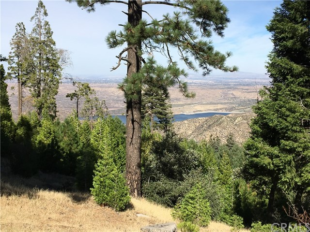 Terreno por un Venta en 700 Mozumdar Drive Cedarpines Park, California 92322 Estados Unidos