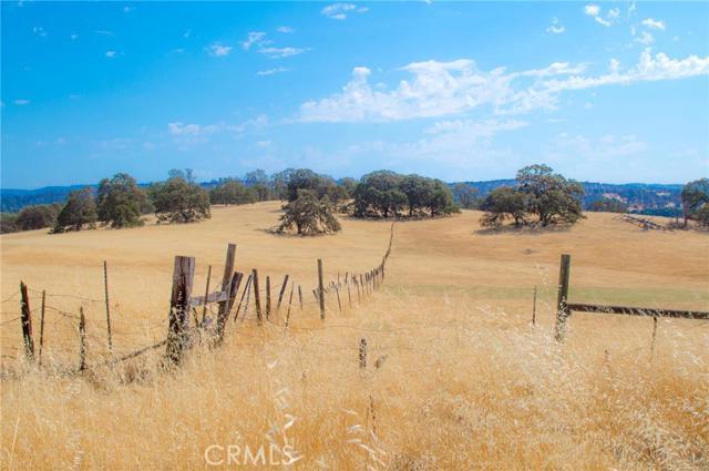 Land for Sale at Teddy Lane Bangor, California 95914 United States