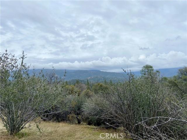 4907 Stumpfield Mountain Road, Mariposa CA: http://media.crmls.org/medias/3b83a452-dadc-4623-bf7f-3f0d30a8df44.jpg