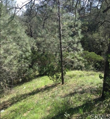 17557 Stagecoach Road Corning, CA 96021 - MLS #: CH17112501
