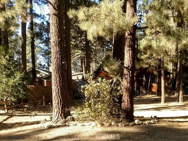 929 Tinkerbell Avenue, Big Bear, CA, 92314