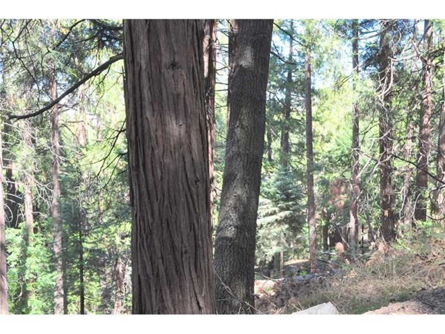 Additional photo for property listing at 0 Deer Run Road Cedarpines Park, California United States