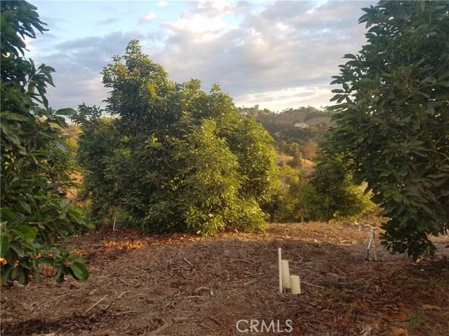 0 Sandia Creek Dr, Temecula, CA  Photo 19