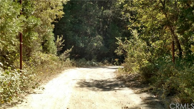 Additional photo for property listing at 0 Bean Creek  Berry Creek, California 95916 United States