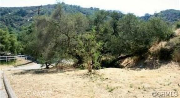 30295 Hunky Dory, Trabuco Canyon CA: http://media.crmls.org/medias/3e6728a7-90c2-458e-b489-049555de31e9.jpg