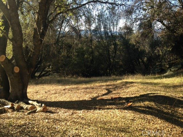0 Moonray Lane, Oakhurst CA: http://media.crmls.org/medias/3f1d0d77-47ad-442d-a9f4-712f66a5f28c.jpg
