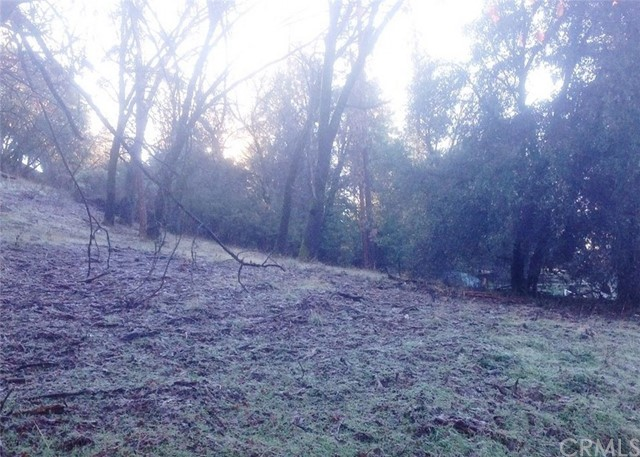 Lot 19 East Sugar Pine Drive, Oakhurst, California, 93644