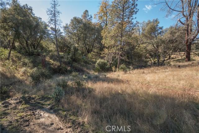 4907 Stumpfield Mountain Road, Mariposa CA: http://media.crmls.org/medias/3f6fcf6c-2f1e-4605-beeb-4d55dbab4c2a.jpg