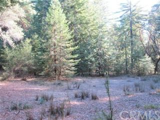 0 Big Basin Way, Outside Area (Inside Ca) CA: http://media.crmls.org/medias/4035a036-c7ab-4be4-82c4-b338d1a71fd3.jpg