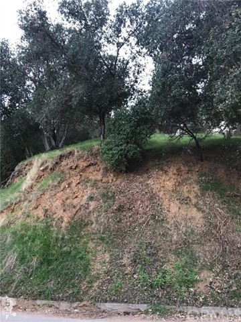 Wildwood Dr, Los Angeles, CA 90041 Photo 14