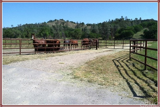 68591 Vineyard Canyon Road Parkfield, CA 93451 - MLS #: NS18022150