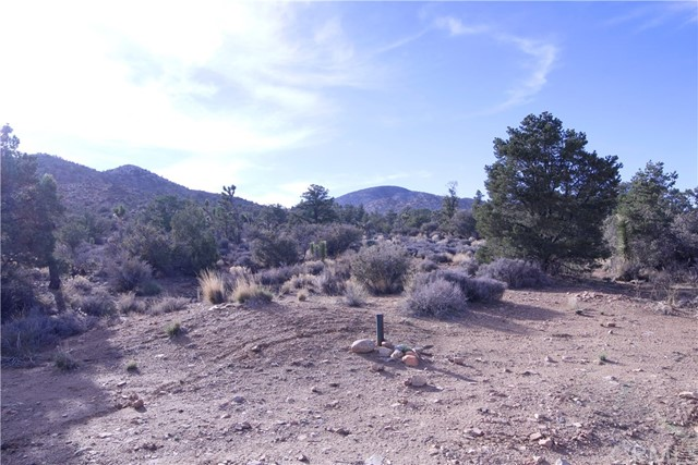 45448 Burns Canyon Road, Pioneertown CA: http://media.crmls.org/medias/42b77568-a704-4cba-a819-7984e5bb211d.jpg