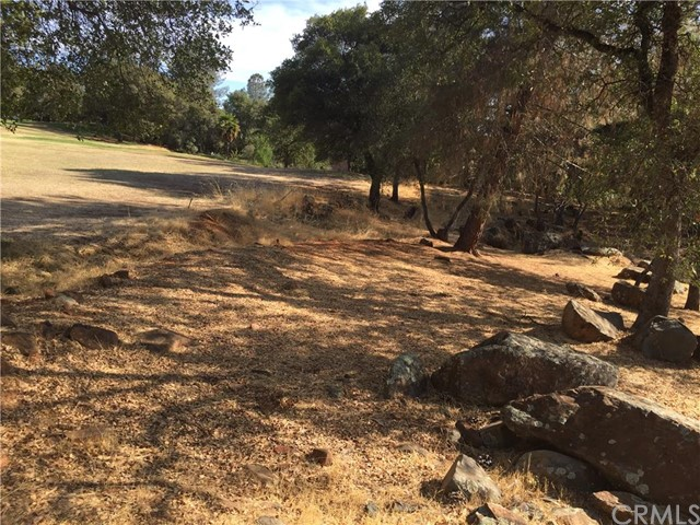 Additional photo for property listing at 0 Beckwourth Court  Oroville, California 95966 United States