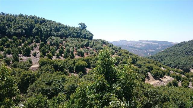 0 Pauma Ridge Road, Pala CA: http://media.crmls.org/medias/43bee1e9-8dee-46f3-9e3d-13bd545e9bff.jpg