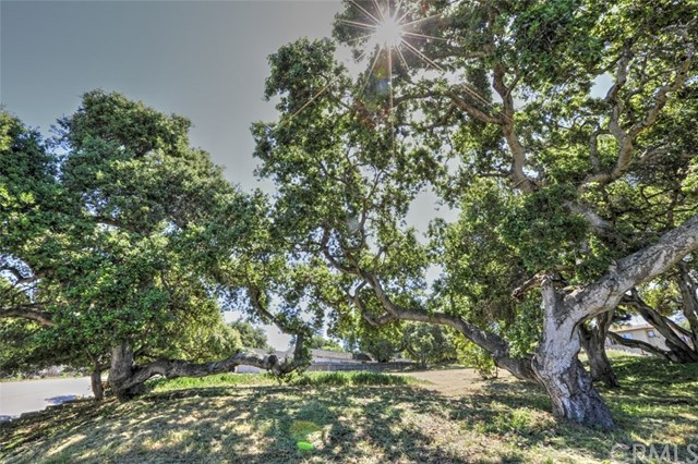 One of Arroyo Grande Homes for Sale at 0  El Camino Real