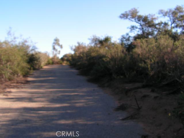Lost Horizon Drive