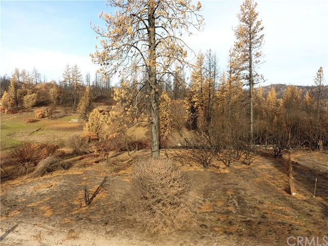 Detail Gallery Image 1 of 31 For 0 Indian Cemetary Rd, Berry Creek,  CA 95916 - – Beds | – Baths