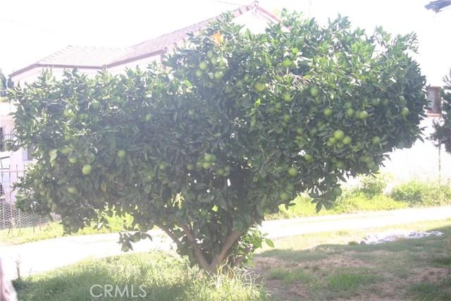 11226 California Avenue, Lynwood CA: http://media.crmls.org/medias/45cff544-e8f1-4bd3-a412-24a3ce8d3b69.jpg