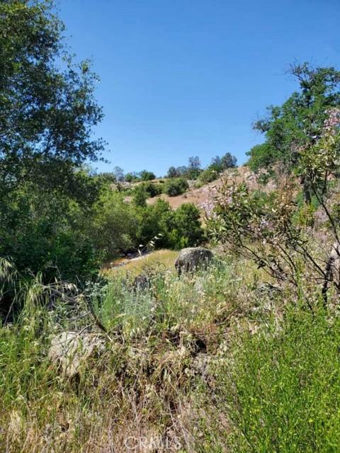 0 Lot 1952 Ranger Circle Drive, Coarsegold CA: http://media.crmls.org/medias/45f219d0-aa86-4835-ab52-e96a4a03f268.jpg