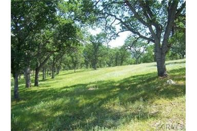 Additional photo for property listing at 2392 Old Hwy  Catheys Valley, California 95306 United States