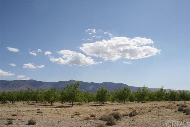 Land for Sale at 33633 Old Woman Springs Road Lucerne Valley, 92356 United States